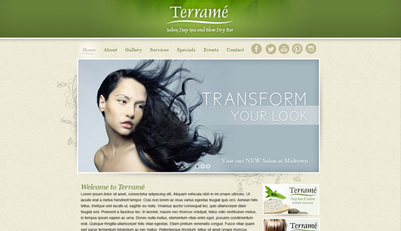 Terrame Salon and Blow Dry Bar Website